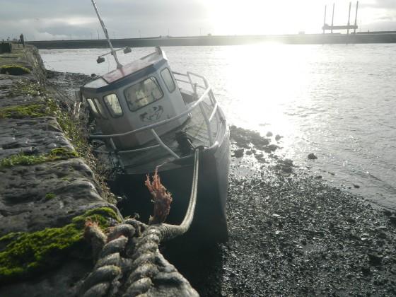 Exploring Galway Bay